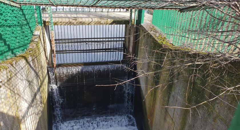 Miasto, Toruniu powstanie mała elektrownia wodna [FOTO] - zdjęcie, fotografia