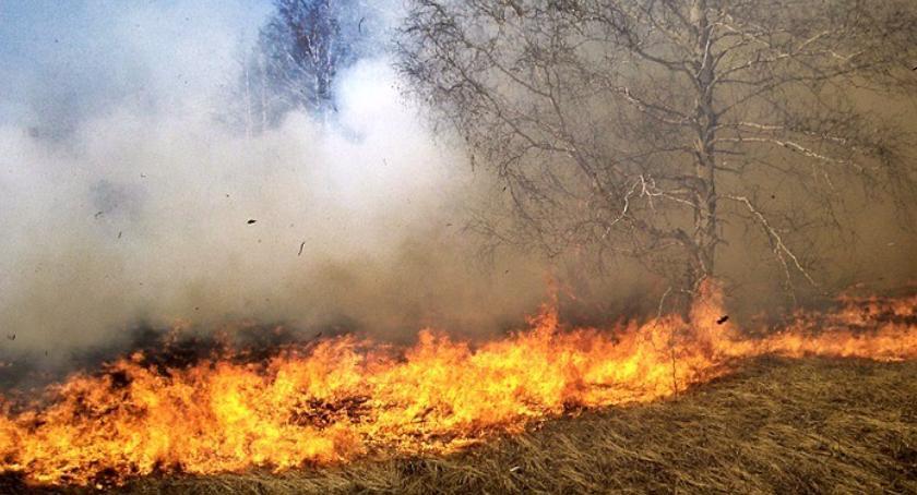 Straż pożarna, Duży problem strażaków Ludzie notorycznie ignorują zakaz! - zdjęcie, fotografia