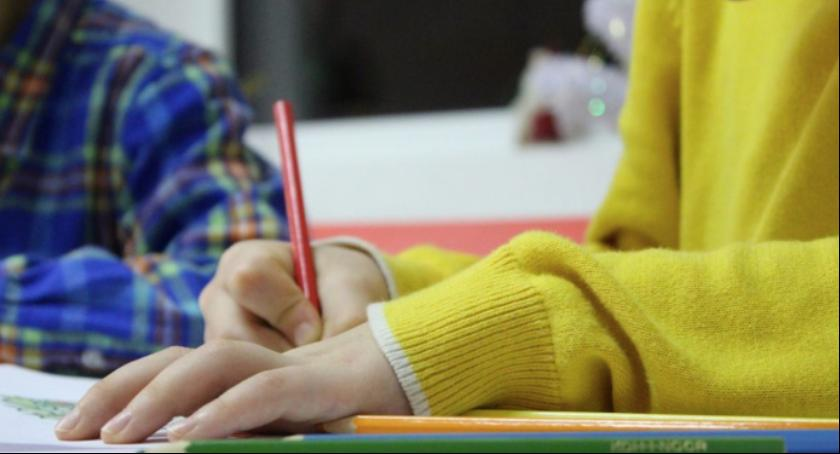 Szkoły i licea, toruńskie placówki które przystąpią strajku nauczycieli - zdjęcie, fotografia