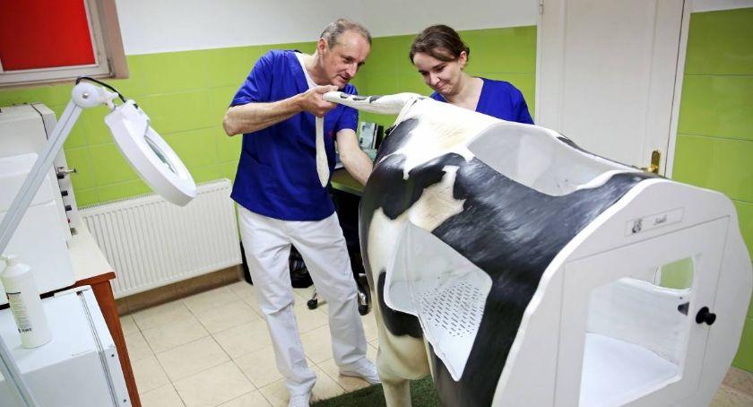 Uczelnie wyższe, Toruń będzie mieć Centrum Medycyny Weterynaryjnej - zdjęcie, fotografia