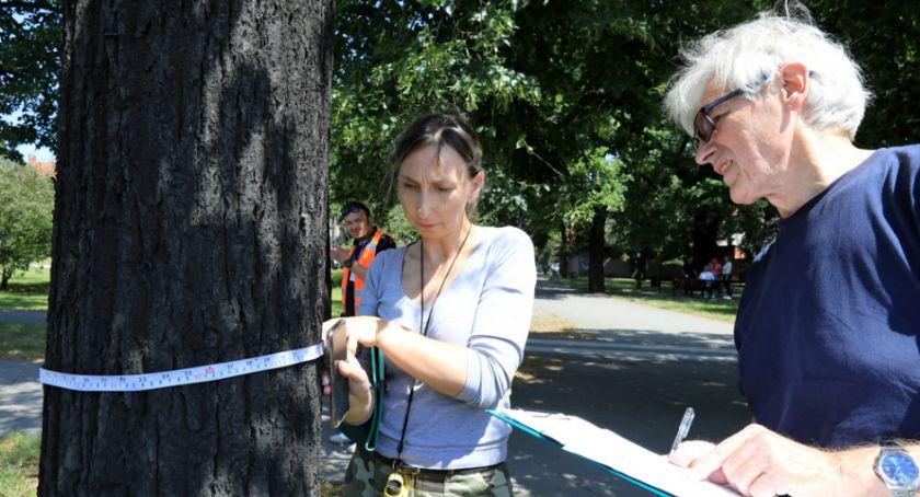 Komunikaty, Miasto reaguje protestach obronie drzew centrum Torunia [FOTO] - zdjęcie, fotografia