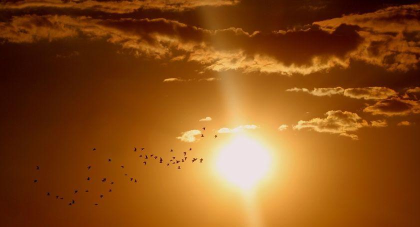Ciekawostki, ostrzega dziś wystąpi burza słoneczna! grozi - zdjęcie, fotografia
