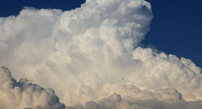 Pogoda, Piątek oknami będzie Toruniu - zdjęcie, fotografia