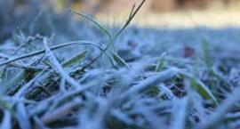 Ubierzcie się ciepło - dziś będzie zimno!