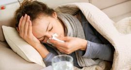 Atak grypy w Toruniu. Jak prezentują się najnowsze statystyki?