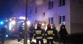 Pożar na Ligi Polskiej w Toruniu. Znamy szczegóły nocnej akcji strażaków [FOTO]