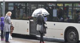 W gminie Lubicz ruszyła dziś kolejna linia autobusowa. Znamy rozkład jazdy!