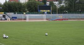 Mistrzostwa świata w piłce nożnej w Toruniu? Prezydent Zaleski zabrał głos