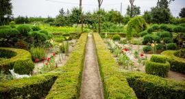 Masz piękny ogród? Zgłoś go do wyjątkowego konkursu