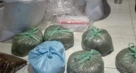 Uderzenie toruńskiej policji w narkotykowy biznes. Są zatrzymania [FOTO]