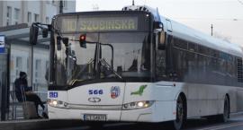 Uwaga pasażerowie MZK! W Toruniu autobusy będą jeździć zamiast tramwajów! [MAPKA]