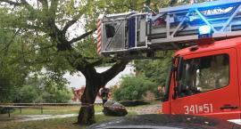 Poranna akcja strażaków na ulicy Dekerta w Toruniu. Co tam się wydarzyło? [FOTO]