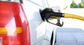 Już niedługo pojawią się nowe oznaczenia na toruńskich stacjach benzynowych