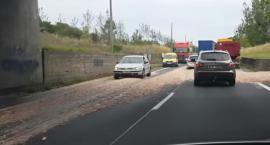 Toruńską ulicę zalały olej oraz zwierzęce odpady [WIDEO]