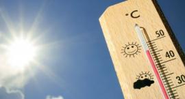 Toruński sanepid ostrzega: ten problem może nas dopaść w upalne dni!