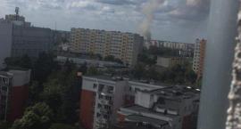 Kłęby dymu nad Toruniem. Strażacy gaszą pożar [PILNE]