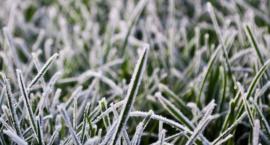 W Toruniu będzie zimno, zwłaszcza w nocy!