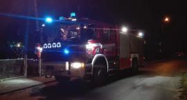 Nietypowa interwencja strażaków w Nowy Rok pod Toruniem