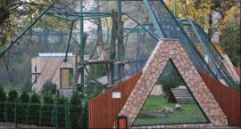 Wyjątkowe ferie w Ogrodzie Zoobotanicznym w Toruniu