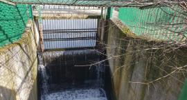 Czy w Toruniu powstanie mała elektrownia wodna? [FOTO]