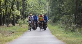 W Toruniu i regionie powstaną nowe ścieżki rowerowe