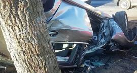 Wypadek pod Toruniem. Samochód uderzył drzewo! [FOTO]