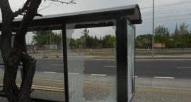 Wandale zniszczyli nowy przystanek autobusowy w Toruniu! [FOTO]