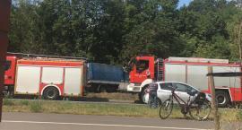 Samochód dostawczy uderzył w drzewo. Kierowca uwięziony w pojeździe! [PILNE]