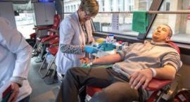 W Toruniu można oddać krew i pomóc potrzebującym