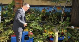 Miasto reaguje po wypadku na placu zabaw przy przedszkolu w Toruniu