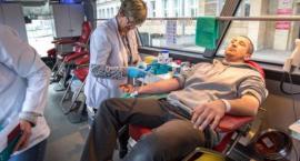 W czwartek oddajemy krew i pomagamy potrzebującym w Toruniu