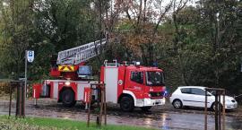Spora liczba interwencji strażaków. Czy dziś pogoda w Toruniu się uspokoi?