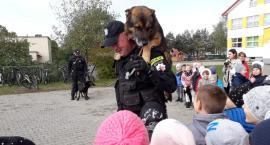 Specjalne szkolenie dla pierwszaków. Policjanci odwiedzili gminę Łysomice [FOTO]