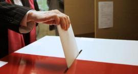 Wybory parlamentarne 2019. Toruń zagłosował inaczej niż kraj