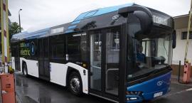 Elektryczne autobusy dla Torunia. Pojawił się spory problem...