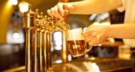 Gdzie na piwo w Toruniu?