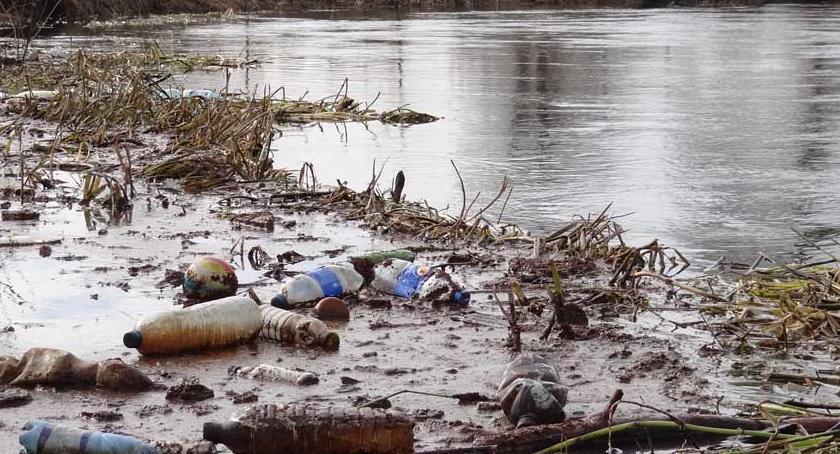 Wydarzenia lokalne, Posprzątają Drwęcę - zdjęcie, fotografia