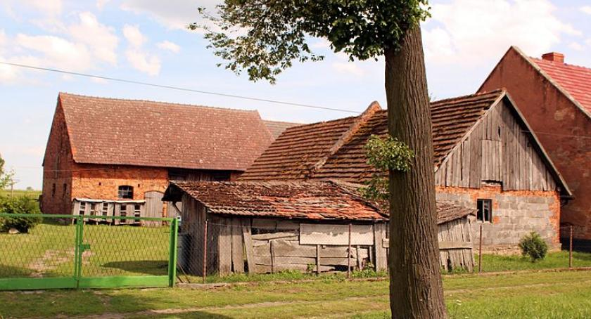 Instytucje rolnicze, Premia przekazanie - zdjęcie, fotografia