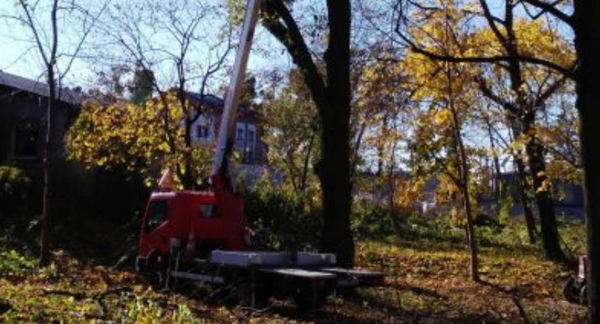 Inwestycje, Rewitalizacja parku Zbójnie - zdjęcie, fotografia