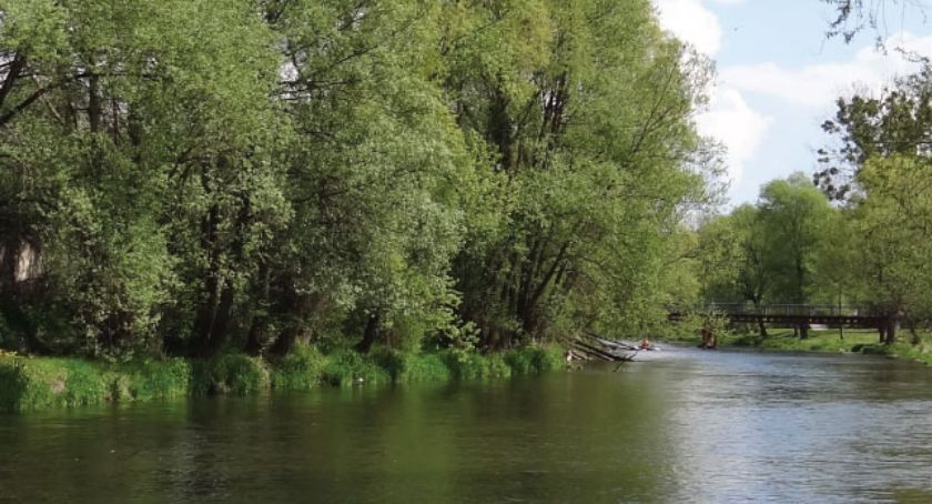 Wydarzenia lokalne, Pomóż posprzątać Dolinę Drwęcy! - zdjęcie, fotografia