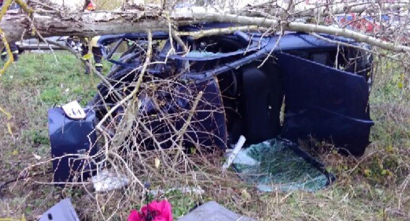 Wypadki, Skończyli podróż drzewie - zdjęcie, fotografia