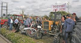 Na przekór suszy w gminie Zbójno