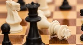 Ferie przy szachownicy