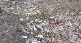 """Śmieci na cmentarzu: """"Gorzej niż zwierzęta"""""""