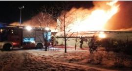 Pracowity tydzień strażaków