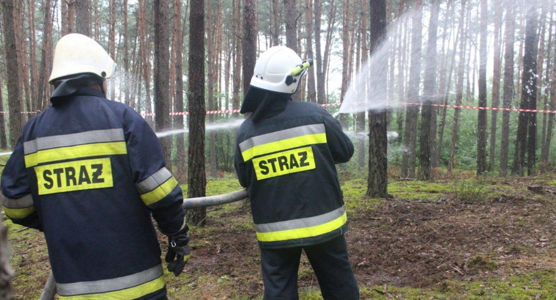 Pożary, Wiosenne palenie fakty - zdjęcie, fotografia