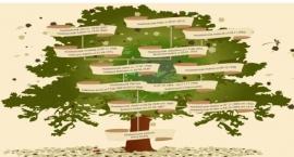Pasjonujące odkrywanie korzeni w genealogii