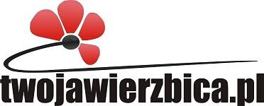 Wierzbica Miasto Wierzbica  | Portal Wierzbicy - TwojaWierzbica.pl