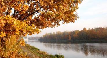 Geoankieta, warsztaty i spacery - ruszają konsultacje w sprawie okolic Kanału Żerańskiego