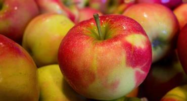 Jabłka a sprawa polska